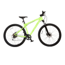 Bicycle Bearings